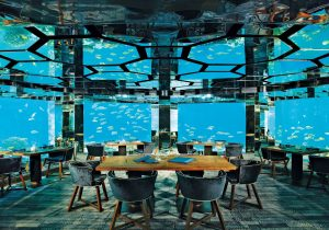 Top Restaurants in the Maldives