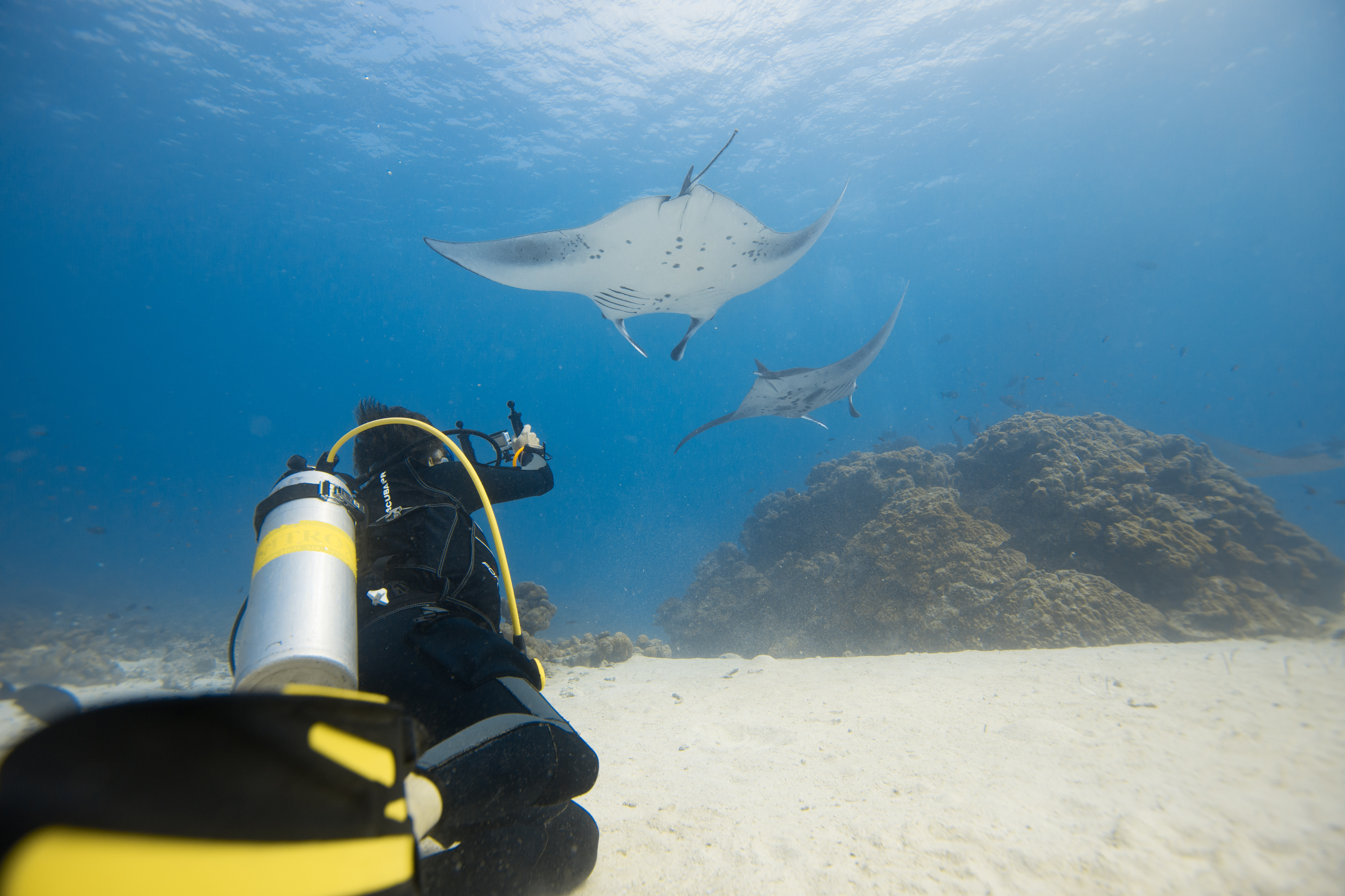 Maldives Underwater Hotels The Ultimate Experience The