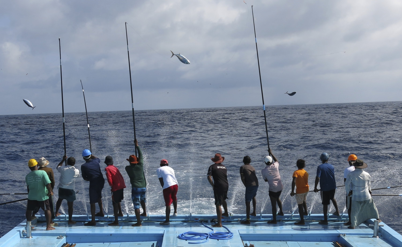 Kết quả hình ảnh cho In Maldives, fishing